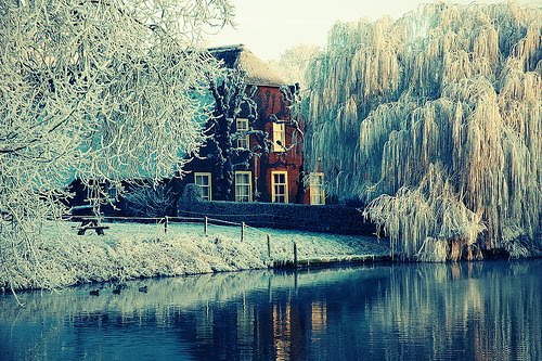 Frosty Morning, Utrecht, Netherlands