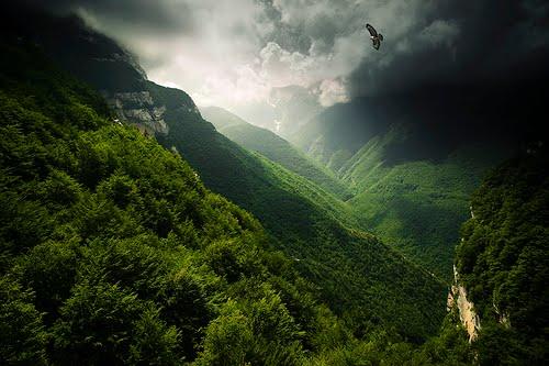 Soaring Eagle, Abruzzo, Italy
