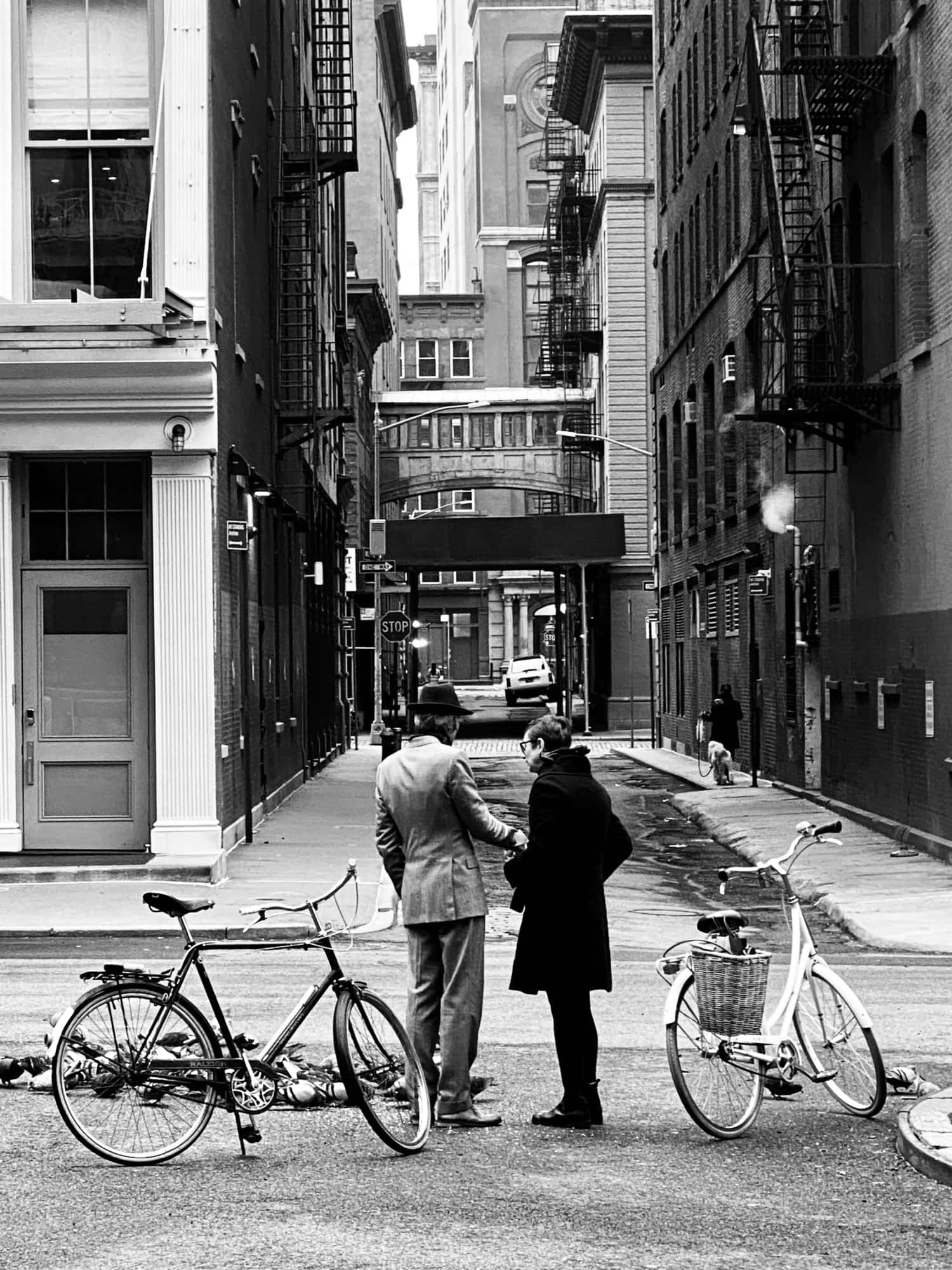 Guide to Biking in New York City
