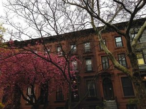 Brownstone Brooklyn: Buy a Townhouse in These Neighborhoods Before the Deals Are Gone