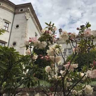 Giardini del Castello del Buonconsiglio, Trento