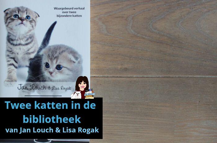 twee-katten-in-de-bibliotheek-louch-rogak_header