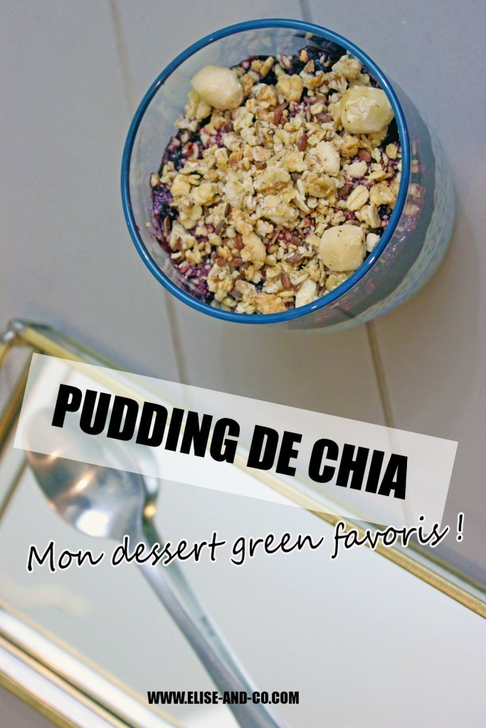pudding de chia-le-dessert-green-par-excellence-pinterest-elise-and-co-683x1024