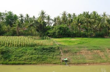 Campagne Battambang Cambodge blog voyage 6