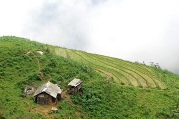Rizières Trek Sapa Vietnam blog voyage 2016 28
