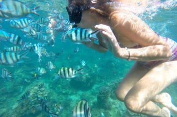 Genting Bay Palau Tioman Malaisie blog voyage 2016 27