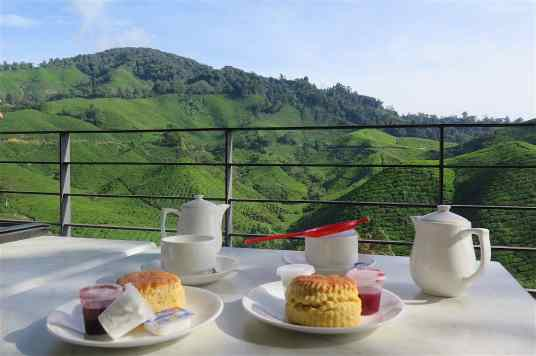 Tea time Tanah Rata Cameron Highlands Malaisie blog voyage 2016 8