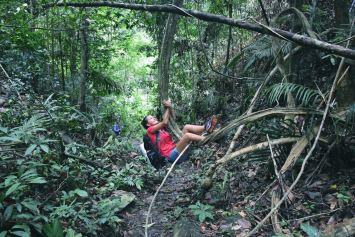 Jane Trek Taman Negara Malaisie blog voyage 2016 29