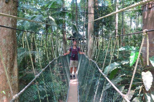 Canopee Walkway Trek Taman Negara Malaisie blog voyage 2016 42