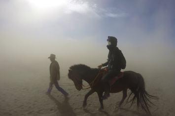 Bromo cheval bromo-indonesie-blog-voyage-2016-23