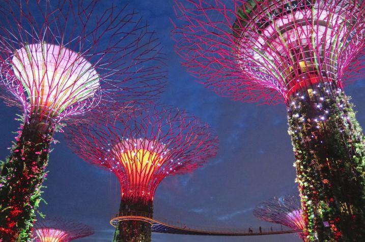 Supertrees Singapour blog voyage 2016 9