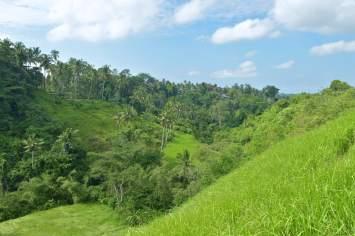 Rando ubud-indonesie-blog-voyage-2016-12