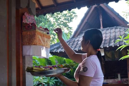Offrandes ubud-indonesie-blog-voyage-2016-8
