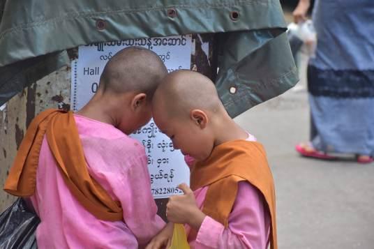 Nonnes Yangon-Myanmar-Birmanie-blog-voyage-2016 11