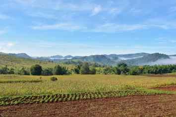 Champs Trek-Kalaw-Inle-Myanmar-blog-voyage-2016 66