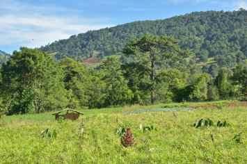 Pins Trek-Kalaw-Inle-Myanmar-blog-voyage-2016 68