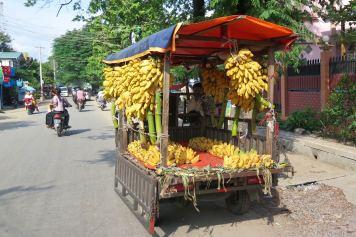 Bananes Mandalay-Inwa-Ubein-Myanmar-Birmanie-blog-voyage-2016 21