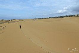 Promenade dans les dunes de Mui Ne, au sud du Vietnam