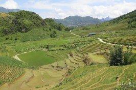 Trek au milieu des rizières au Nord de Sapa, au Vietnam