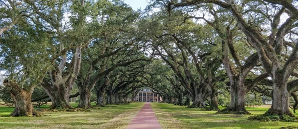 Une journée le long du Mississippi - Oak Alley Plantation Elise on the way blog voyage US Louisiana-14