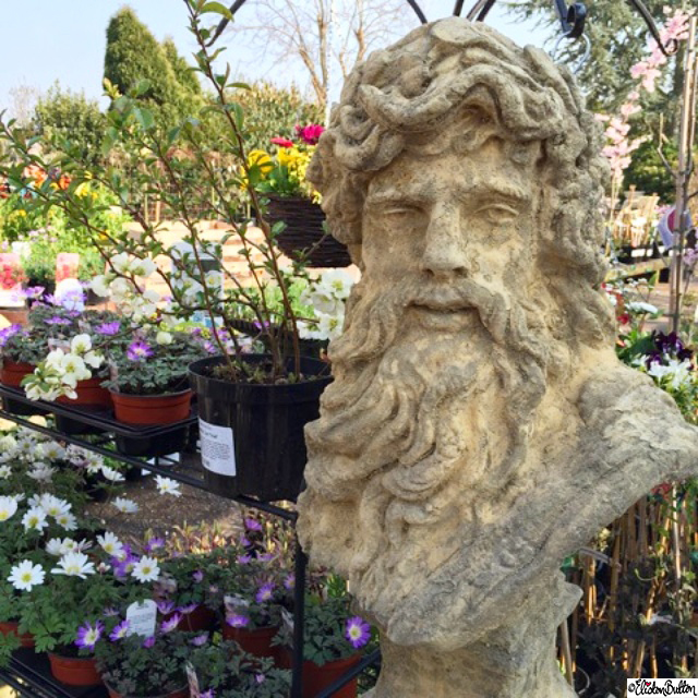 Bust of Zeus Sculpture, Garden Centre Flowers - Around Here...April 2015 at www.elistonbutton.com - Eliston Button - That Crafty Kid – Art, Design, Craft & Adventure.