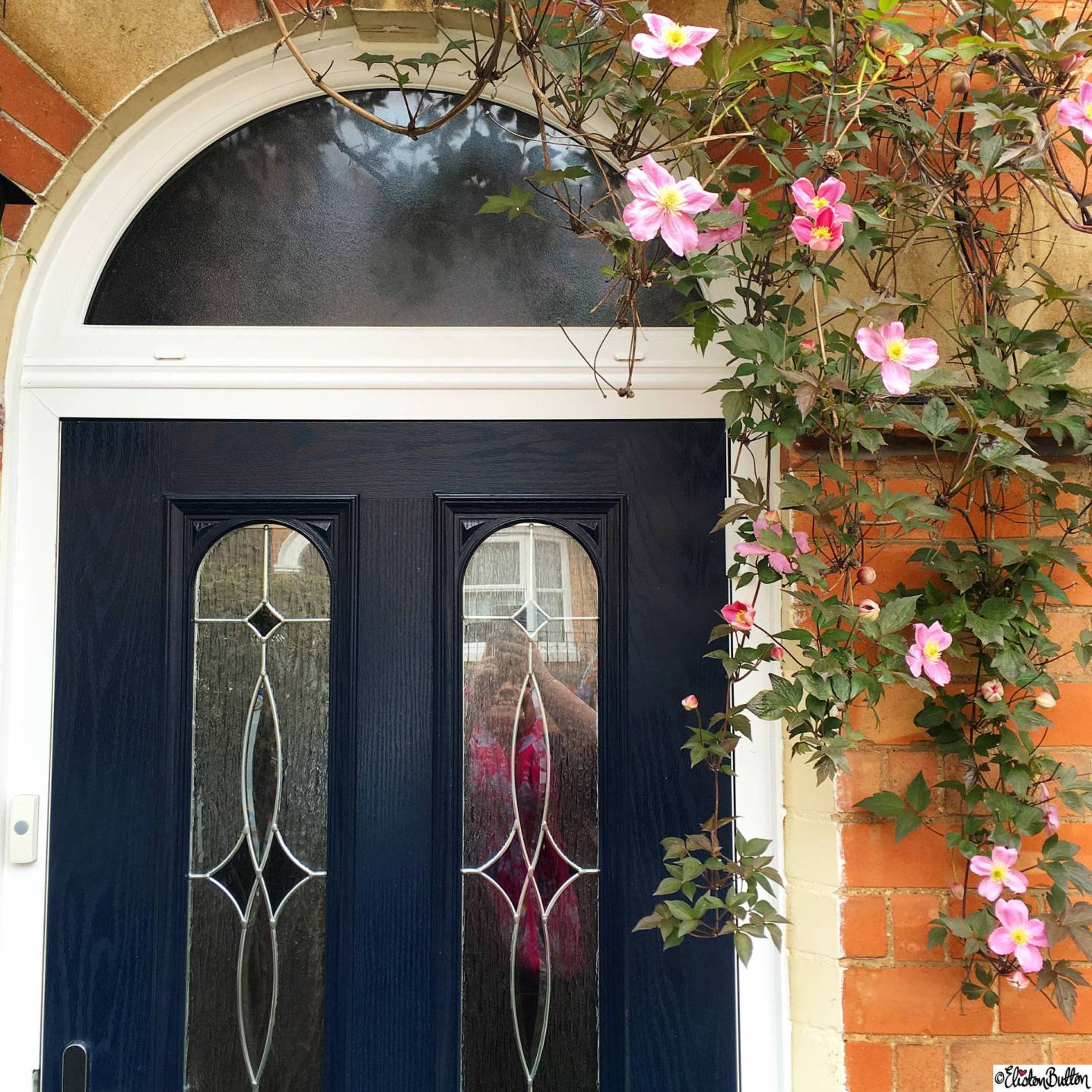 Day 28 - Season - Clematis and Navy Blue Door - Photo-a-Day – April 2016 at www.elistonbutton.com - Eliston Button - That Crafty Kid – Art, Design, Craft & Adventure.