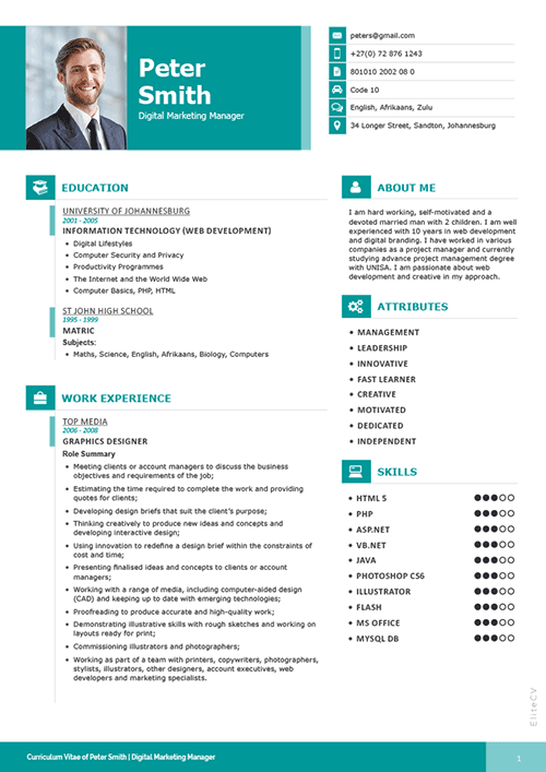 professional resume elite cv professional cv services