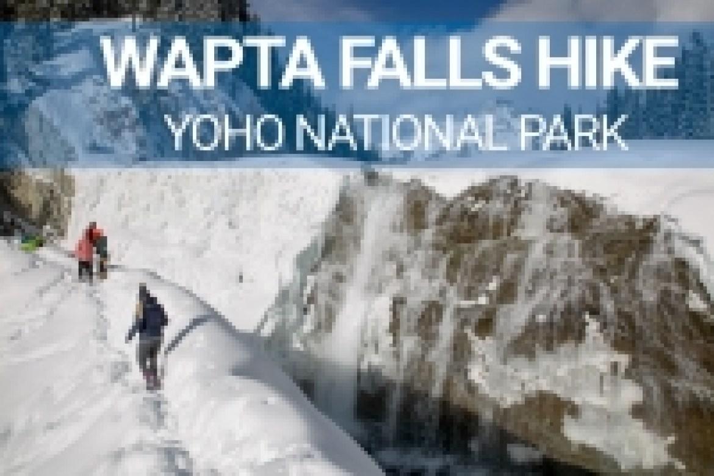 wapta falls hike yoho national park
