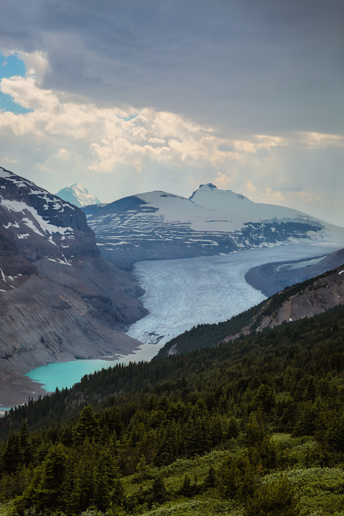 saskatchewan glacier jasper