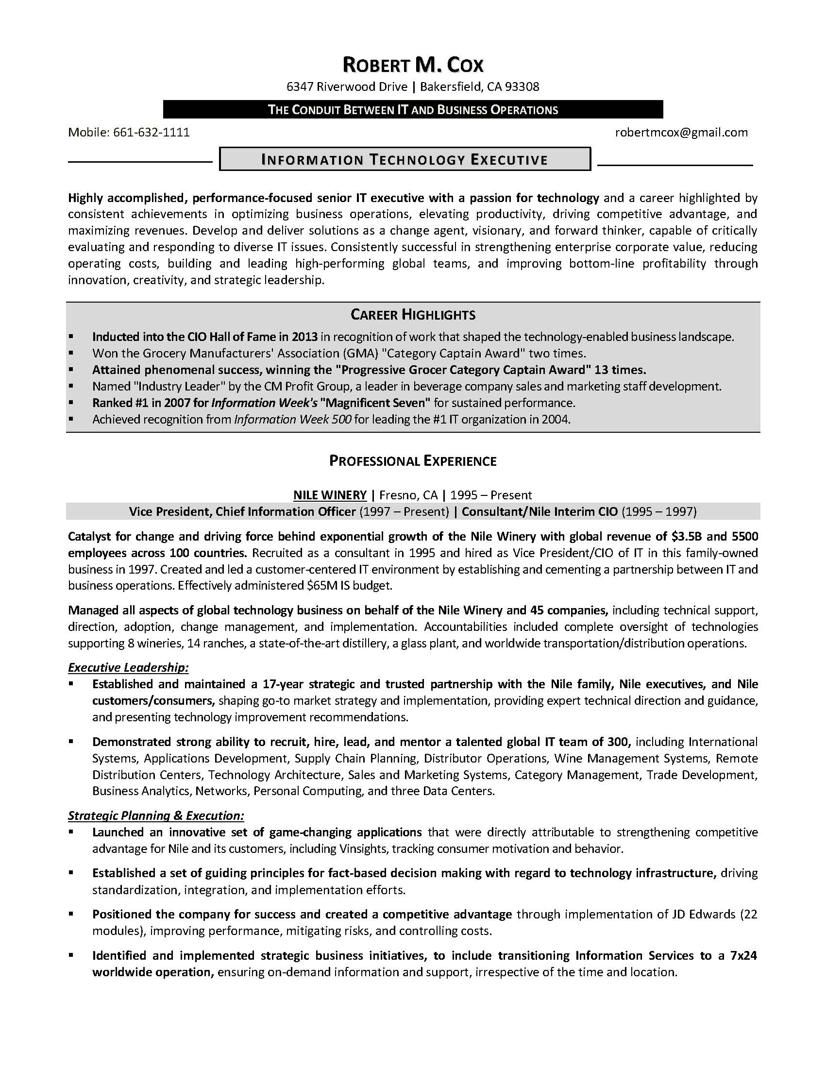 it resume sample 3 provided by elite resume writing services - Business Operation Manager Resume