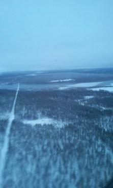 Lapland forest from a plane