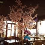Prettiest Restaurant In London? | Mino, Kingston Review