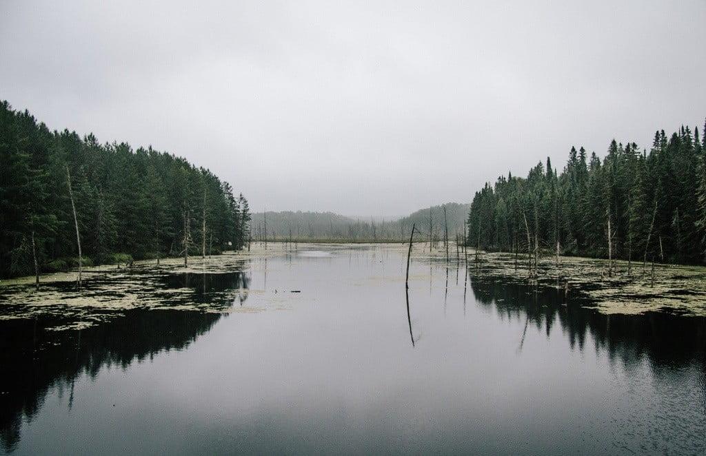 Algonquin Provincial Park photo