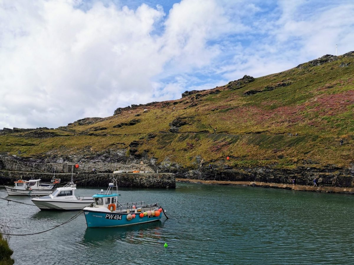 Boscastle Harbour: Photo Gallery 17