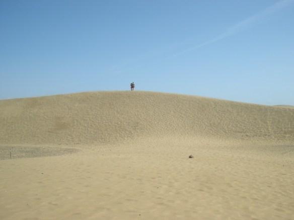 mas dunes small.jpg