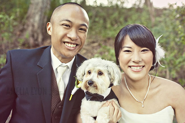 Groomspuppy-Wedding-Dog