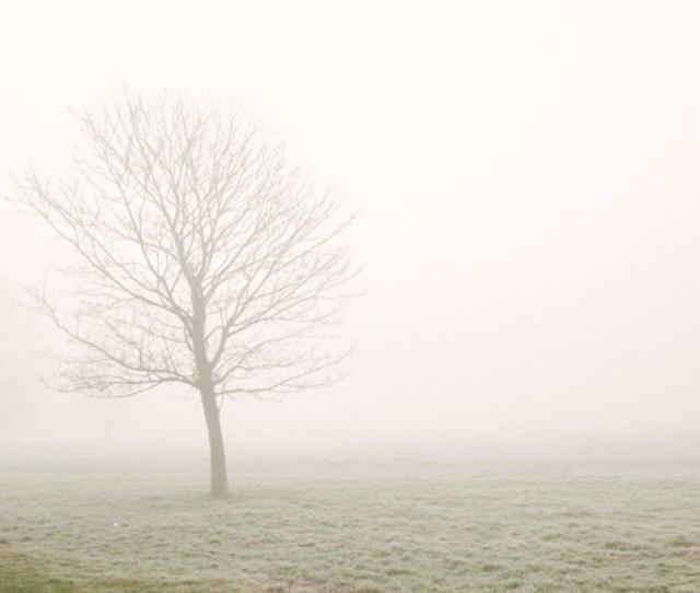 English Fog Love Shoot