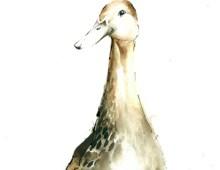 Posh Duck (card)
