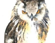 Short-eared owl (card)