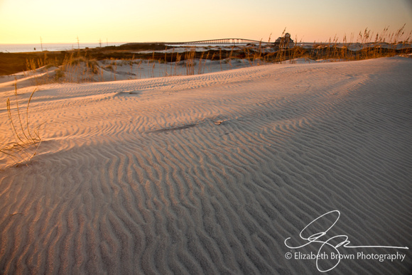 Pea Island National Wildlife Refuge, Hatteras Island, NC