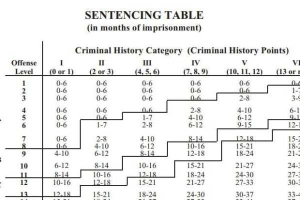 federal sentencing guidelines appeals