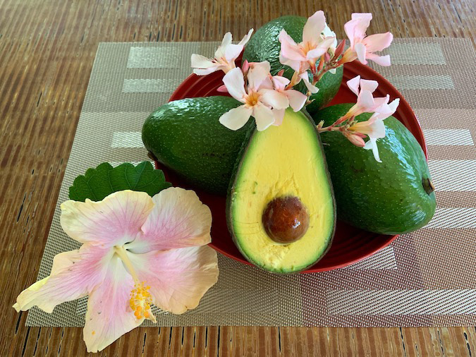Hawai'i Sharwil Avocados are Shockingly Addictive