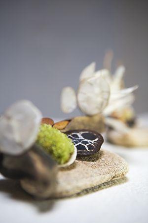 Composition végétale en bois, graines, algues, plantes séchées, coquillages et mousse végétale, par Elizart