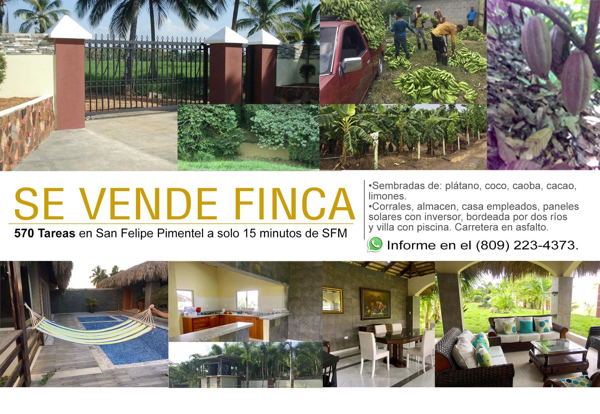 Se vende finca con gran vocación agrícola, se encuentra en una de las zonas de mayor producción como es la comunidad de San Felipe de Pimentel, en la Provincia Duarte, con vías de fácil acceso.