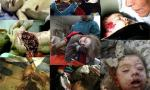 Palestinian isi plange fetita moarta