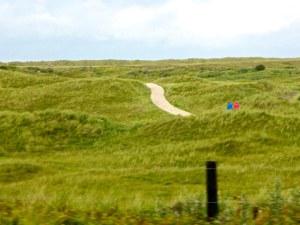 Natur pur Ameland 2015-09-16 Foto Elke Backert (2)