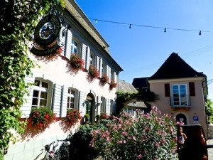 Weingut Bercher Burkheim 2016-08-23 Foto Elke Backert