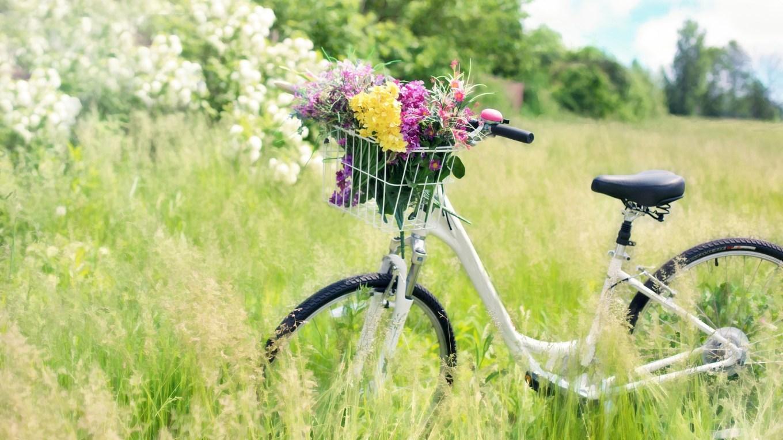 Frühlingsblumenmärchen