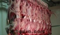 Viandes fraiches: les bouchers astreints à l'obligation d'afficher le prix et l'origine du produit importé 10