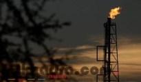 Le pétrole repart en hausse après un rapport de l'Opep 14